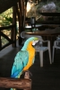 Parrot in the jungle lodge